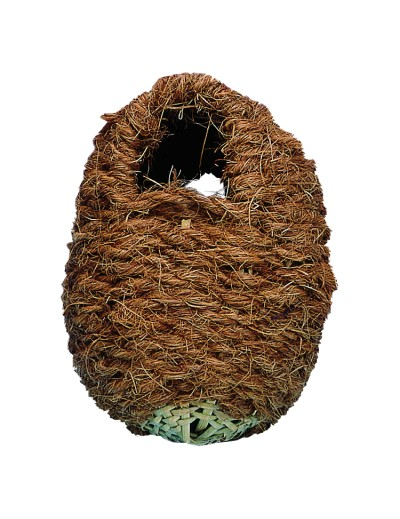 kiki nido de coco para exoticos