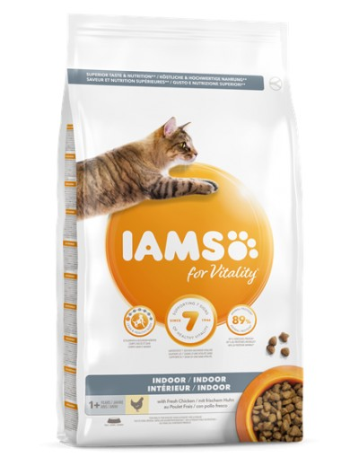iams adult indoor
