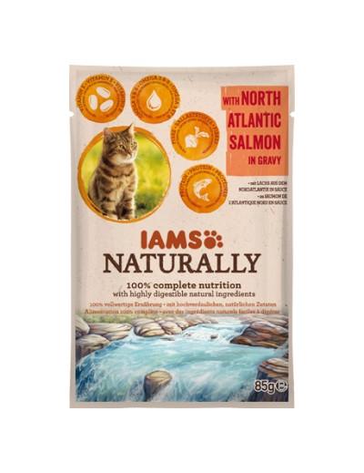 comida húmeda IAMS Naturally gato adulto con Salmón del Norte en Salsa