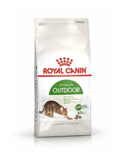 royal canin OUTDOOR para gatos