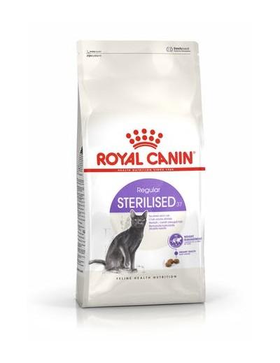 royal canin STERILISED37 para gatos